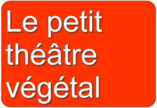 Le petit theatre